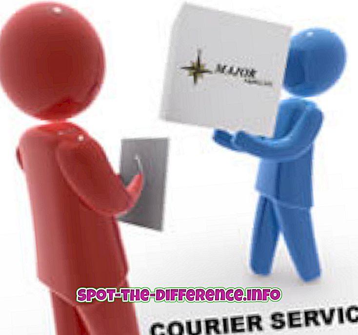 Perbedaan antara Courier dan Cargo
