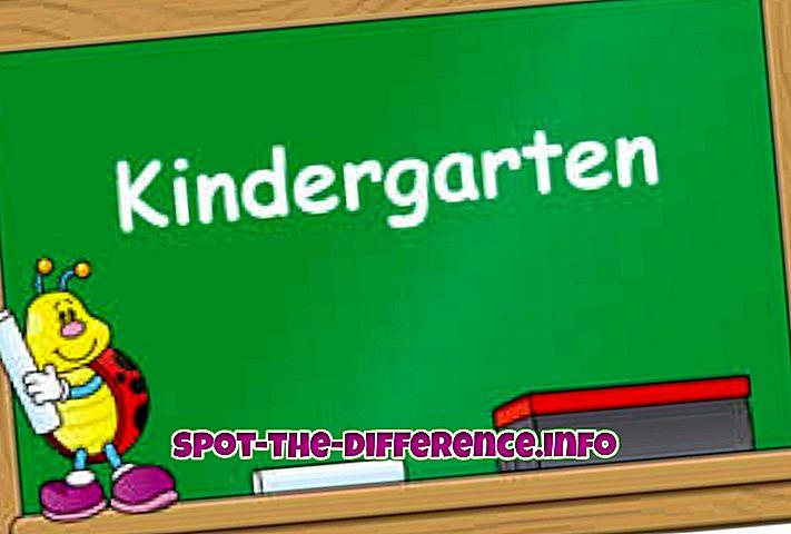 Anaokulu ve Montessori arasındaki fark
