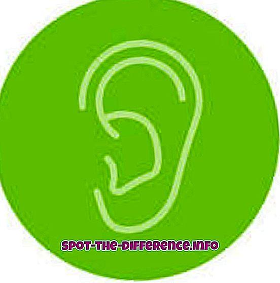 perbandingan populer: Perbedaan antara Mendengarkan dan Mendengar