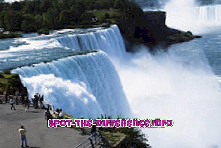 Різниця між Ніагарським водоспадом і водоспадом Вікторія
