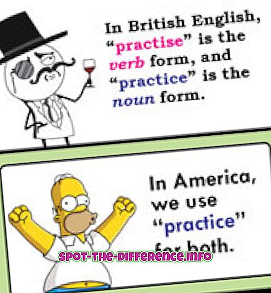 popularne usporedbe: Razlika između prakse i prakse