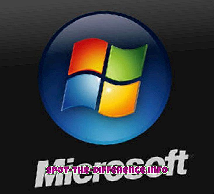 Sự khác biệt giữa Microsoft và Windows