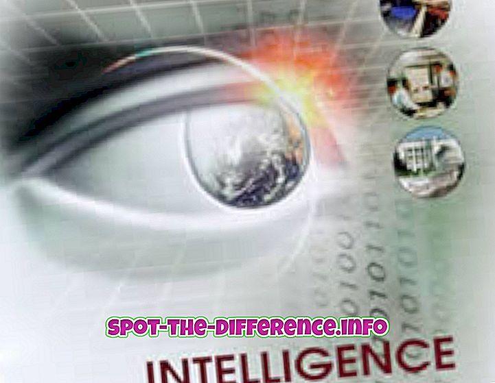 populárne porovnania: Rozdiel medzi inteligenciou a poznaním