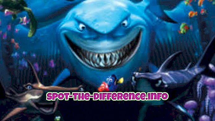 populaire vergelijkingen: Verschil tussen vissen en haaien