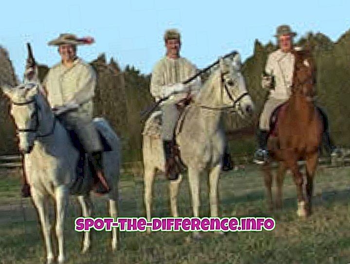 Starpība starp Cowboy un Redneck