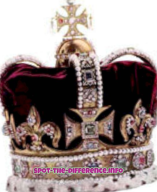 populaire vergelijkingen: Verschil tussen dictatuur en monarchie