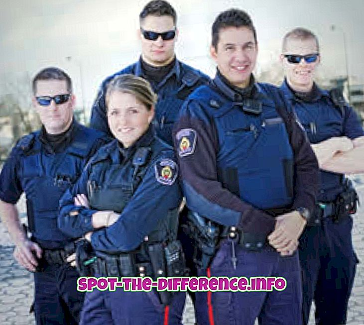 대중적 비교: 경찰과 경찰의 차이점