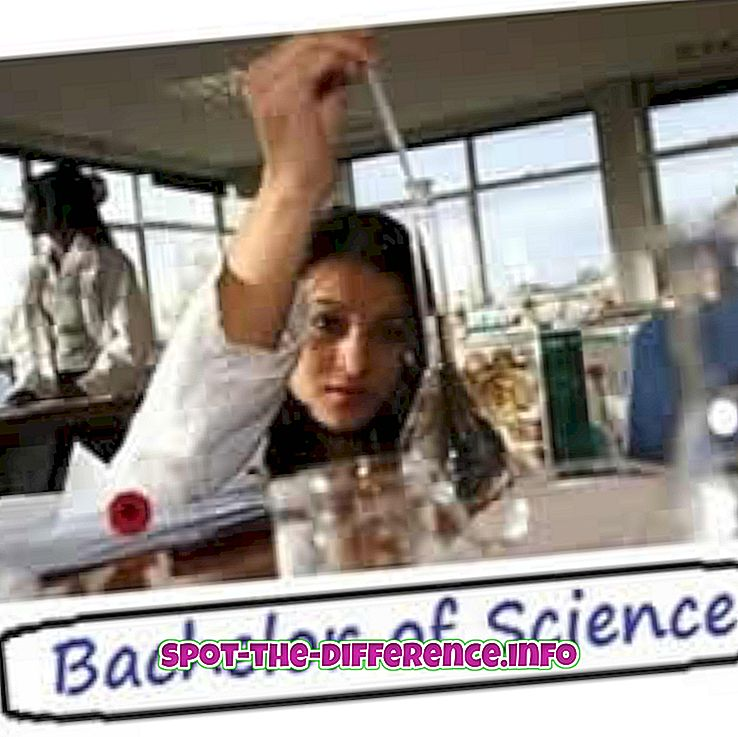 Perbedaan antara Bachelor of Science dan Bachelor of Arts