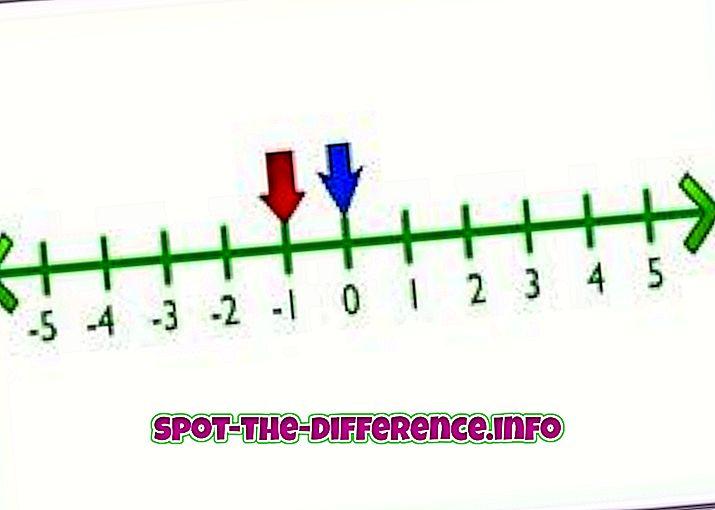 人気の比較: 整数と数の違い