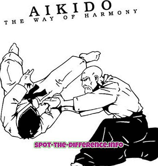 Het verschil tussen Aikido en Jujutsu
