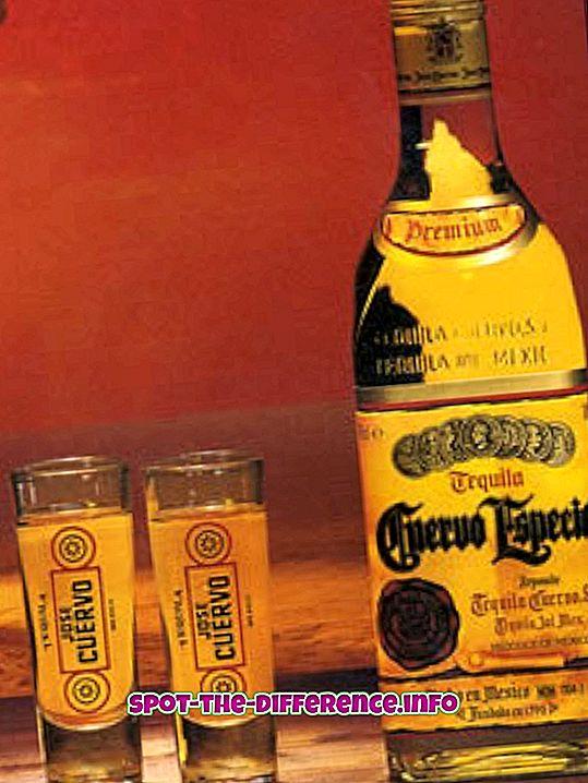 populære sammenligninger: Forskjellen mellom Tequila og Vodka