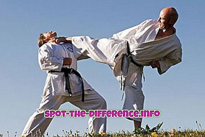 Starpība starp Karate un MMA