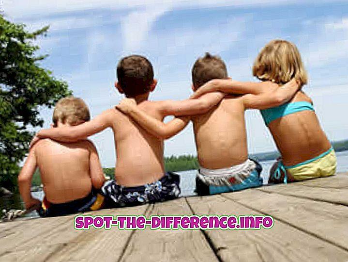 δημοφιλείς συγκρίσεις: Διαφορά μεταξύ φίλου και φίλης