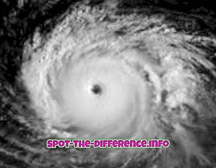 populære sammenligninger: Forskjell mellom orkan og tornado