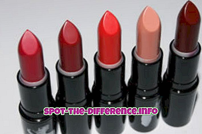 populaarsed võrdlused: Erinevus huulepulga ja huuleläige vahel