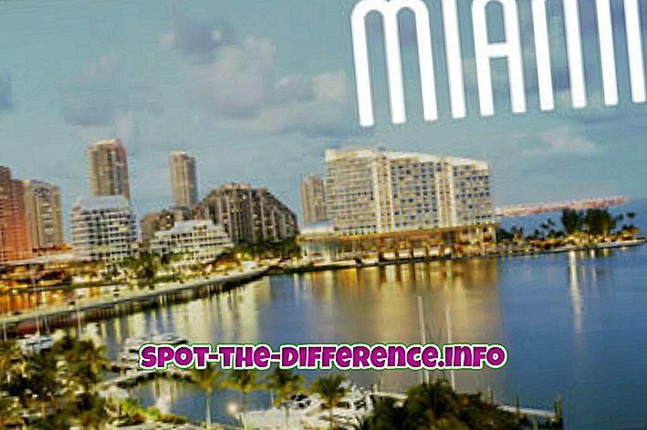 Verschil tussen Miami en Miami Beach