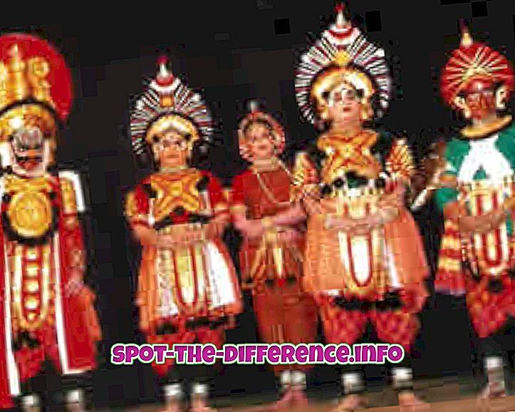 Diferența dintre Kannada și Tamil