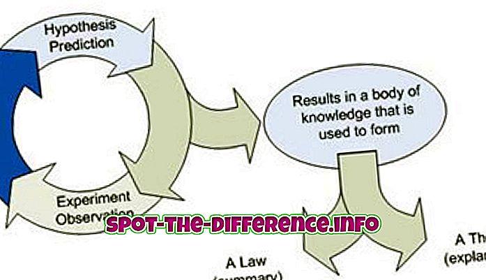 Rozdíl mezi hypotézou a teorií