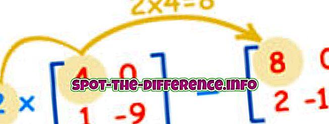δημοφιλείς συγκρίσεις: Διαφορά μεταξύ μήτρας και καθοριστικού παράγοντα