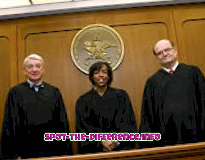 Rozdíl mezi soudci a soudci