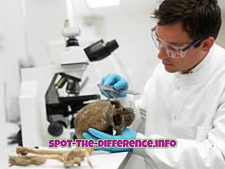 Verschil tussen forensische wetenschap en criminologie