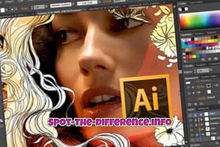 Unterschied zwischen Illustrator und InDesign