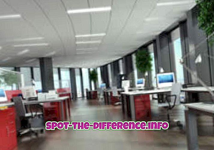 populära jämförelser: Skillnad mellan Office och Company