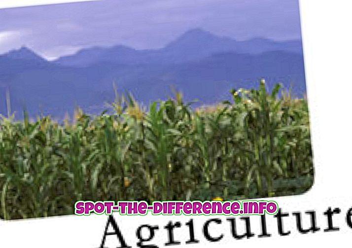 populaarsed võrdlused: Erinevus põllumajanduse ja aianduse vahel
