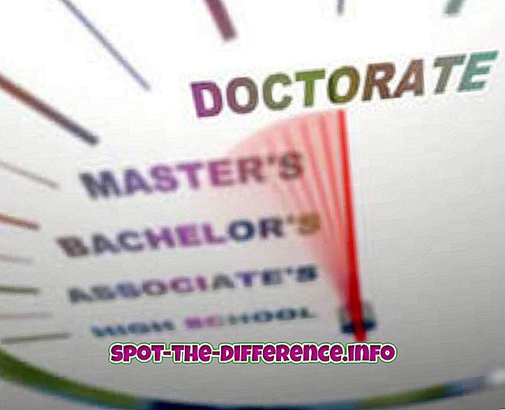 confronti popolari: Differenza tra dottorato e dottorato