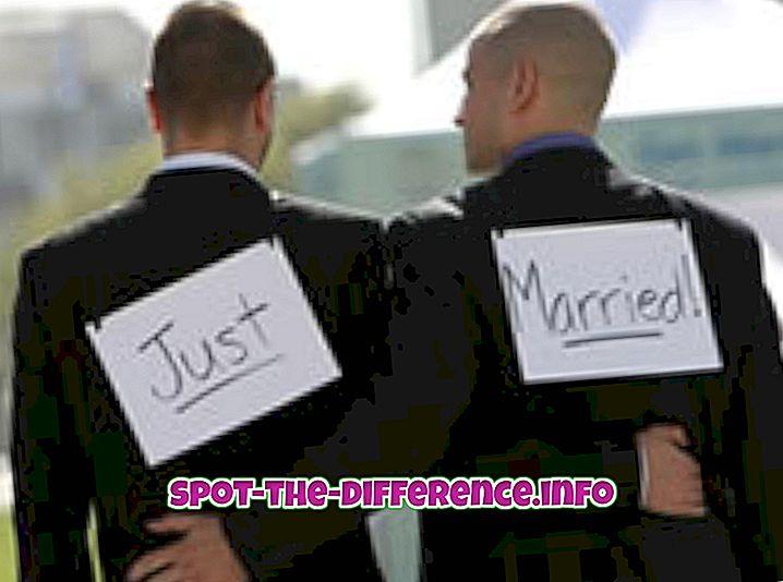 populaarsed võrdlused: Erinevus Gay ja Straight vahel