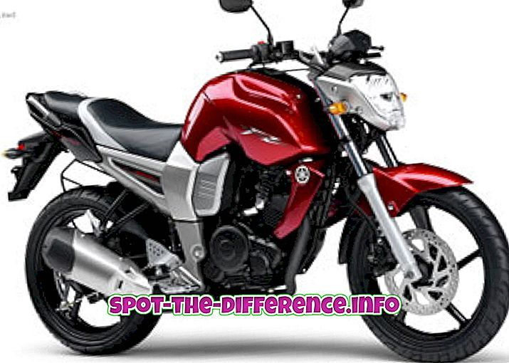 Yamaha FZ: n ja Yamaha FZS: n välinen ero