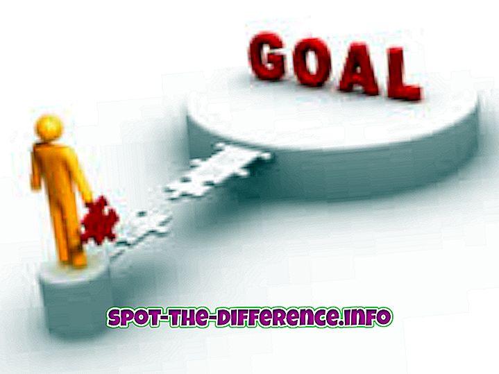 Unterschied zwischen Ziel und Ziel
