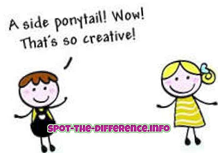 populaire vergelijkingen: Verschil tussen commentaar en compliment