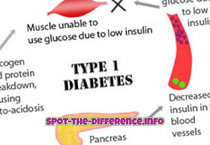 Forskjellen mellom diabetes og hypoglykemi
