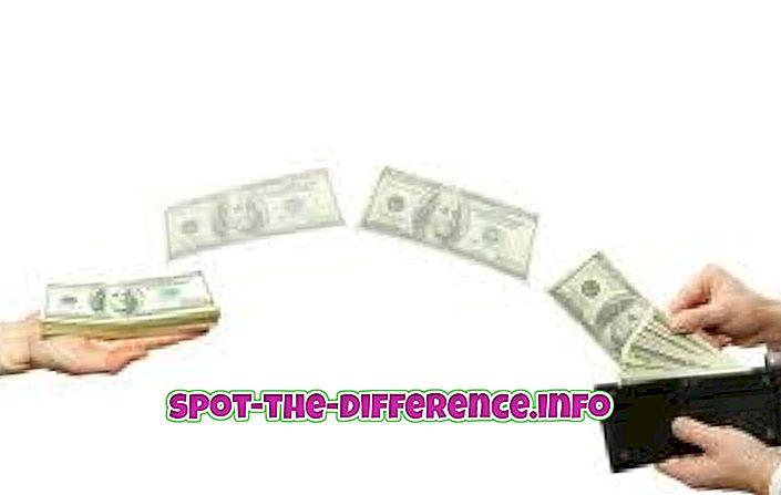 RTGSi ja IMPSi erinevus