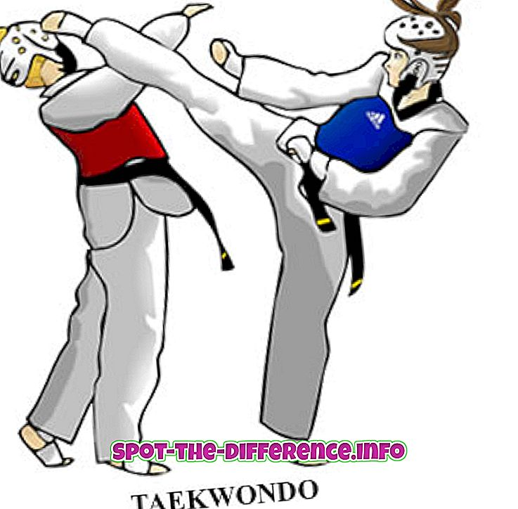 Differenza tra Taekwondo e Kickboxing