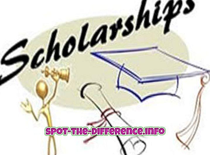 Forskel mellem stipendium og finansiel støtte