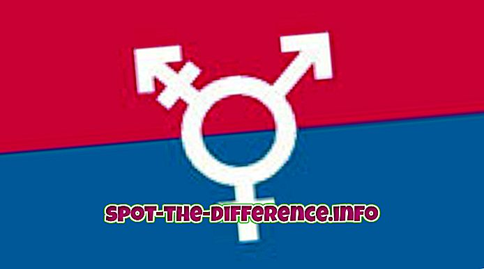 Rozdíl mezi Transgender a Hermafroditem