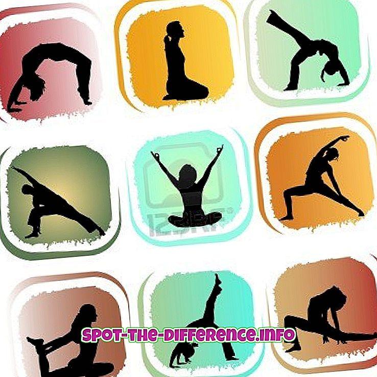 Diferența dintre Yoga și Pranayama