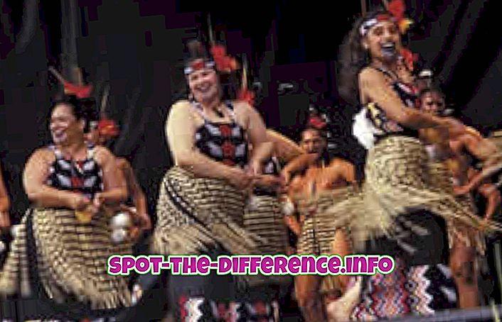 comparações populares: Diferença entre Maori e Pakeha Cultures